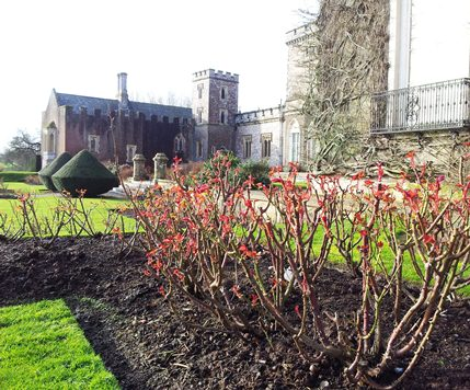 The Gardens are springing into life and will be splendid for our opening.