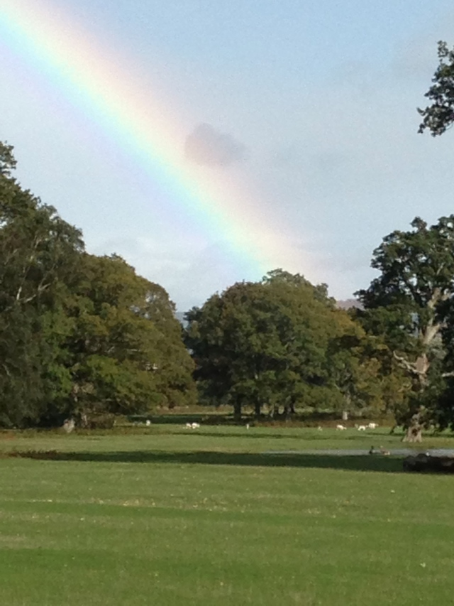 At the end of this Devon rainbow is the Powderham Deer park